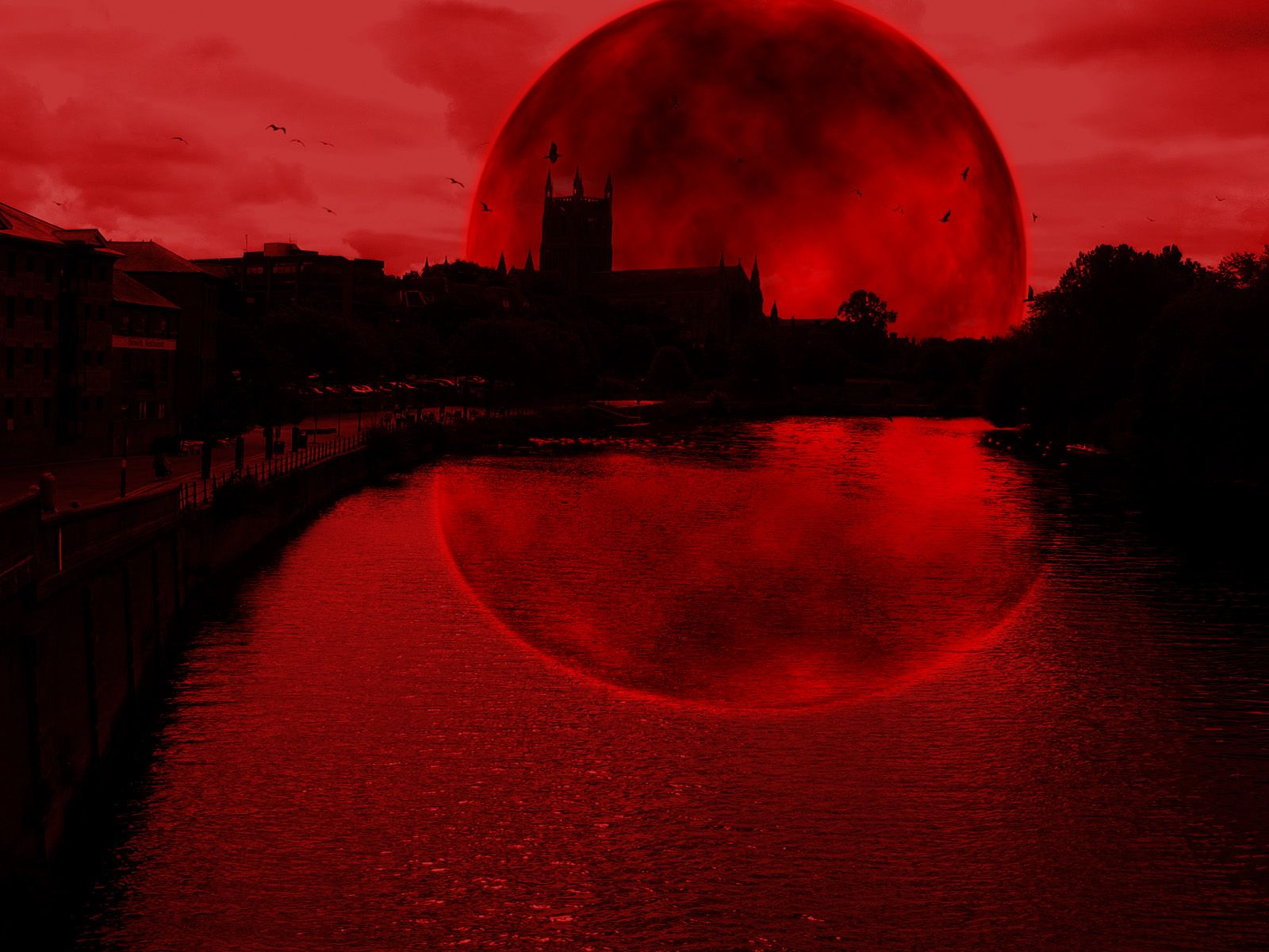 солнечные абсолютно красные картинки подходящей фотографии