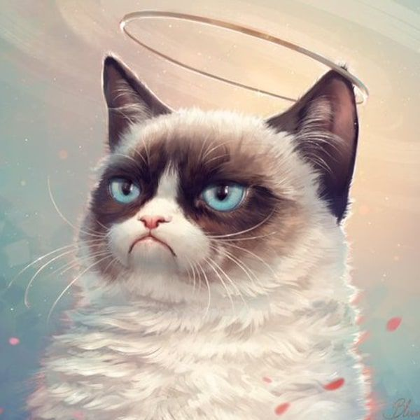 Fans Around the World Artistically Pay Tribute to Grumpy