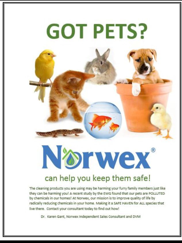 Keep your pets safe! Clean with water and Norwex