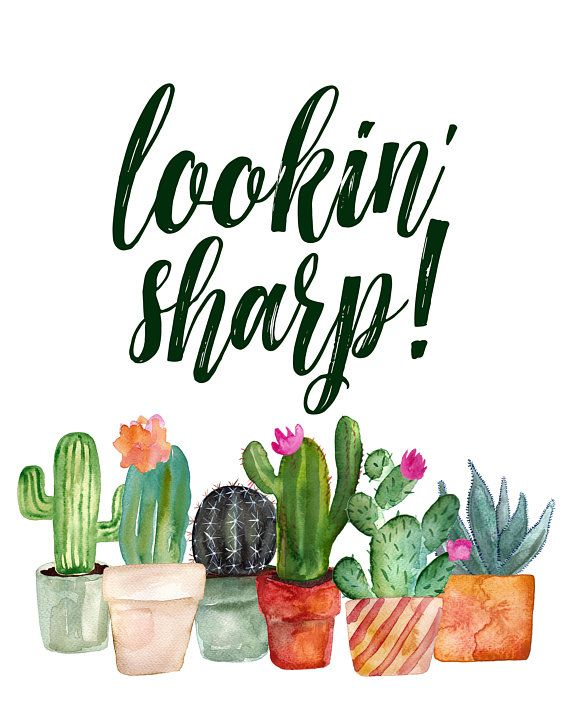 Photo of Cactus Printable, Punny, Plant Pun, Lookin' Sharp Cactus Print, Cactus Art, Watercolor Cacti, Succulent Art, Succulent Print, Gift for Him
