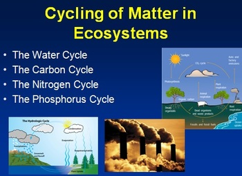 rules of block diagram reduction cycling of matter in ecosystems lesson powerpoint lesson bill of exchange diagram