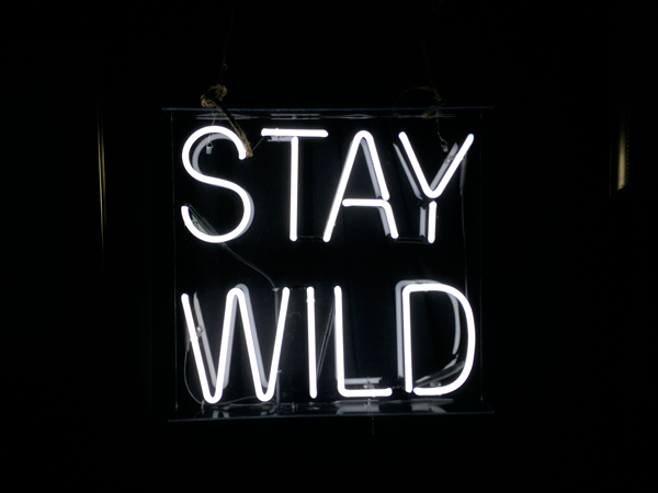 Stay Wild Mini Party at Alt Summit #black #CHRLDR #CHRLDRSQUAD #CHRLDRPHILOSOPHY #BoldStatement #halloweencostumeswomen