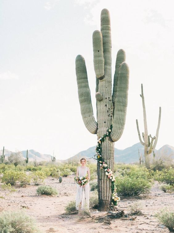 Photo of florals on a cactus – winter desert wedding inspiration