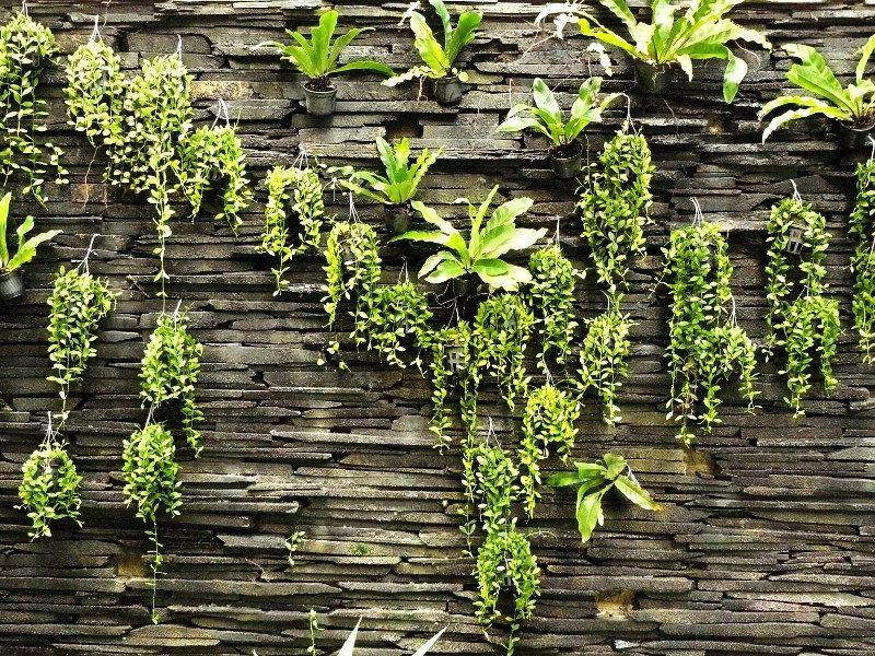 5 designs for growing veggies vertically brick wall