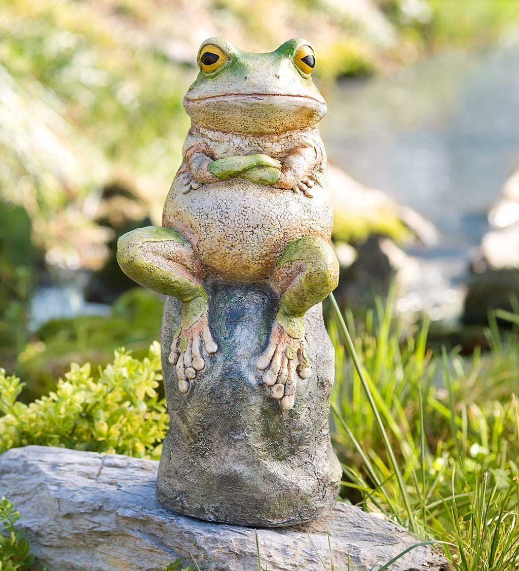 Fabulous Our Grumpy Frog Statue Is The Perfect T For The Lovable Ocoug Best Dining Table And Chair Ideas Images Ocougorg