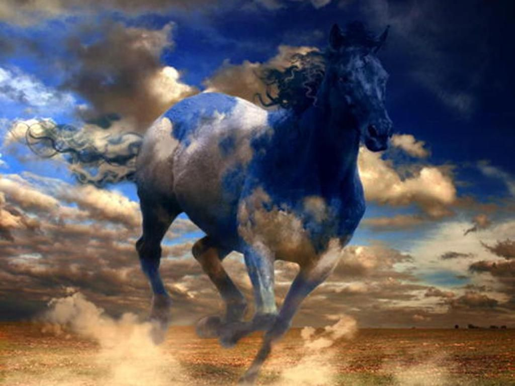 Popular Wallpaper Horse Deviantart - b3bbfa299c3027727cb5f6b2d438d63b  Pic_76755.jpg