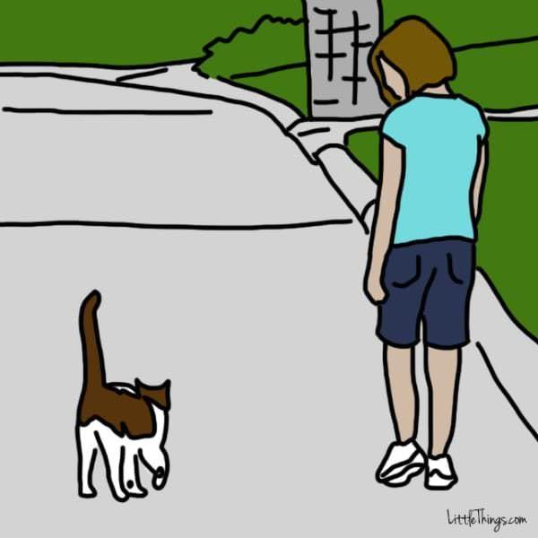 10 comportements de votre chat qui signifient « Je t'aime »... Pour la queue, je ne savais pas du tout !