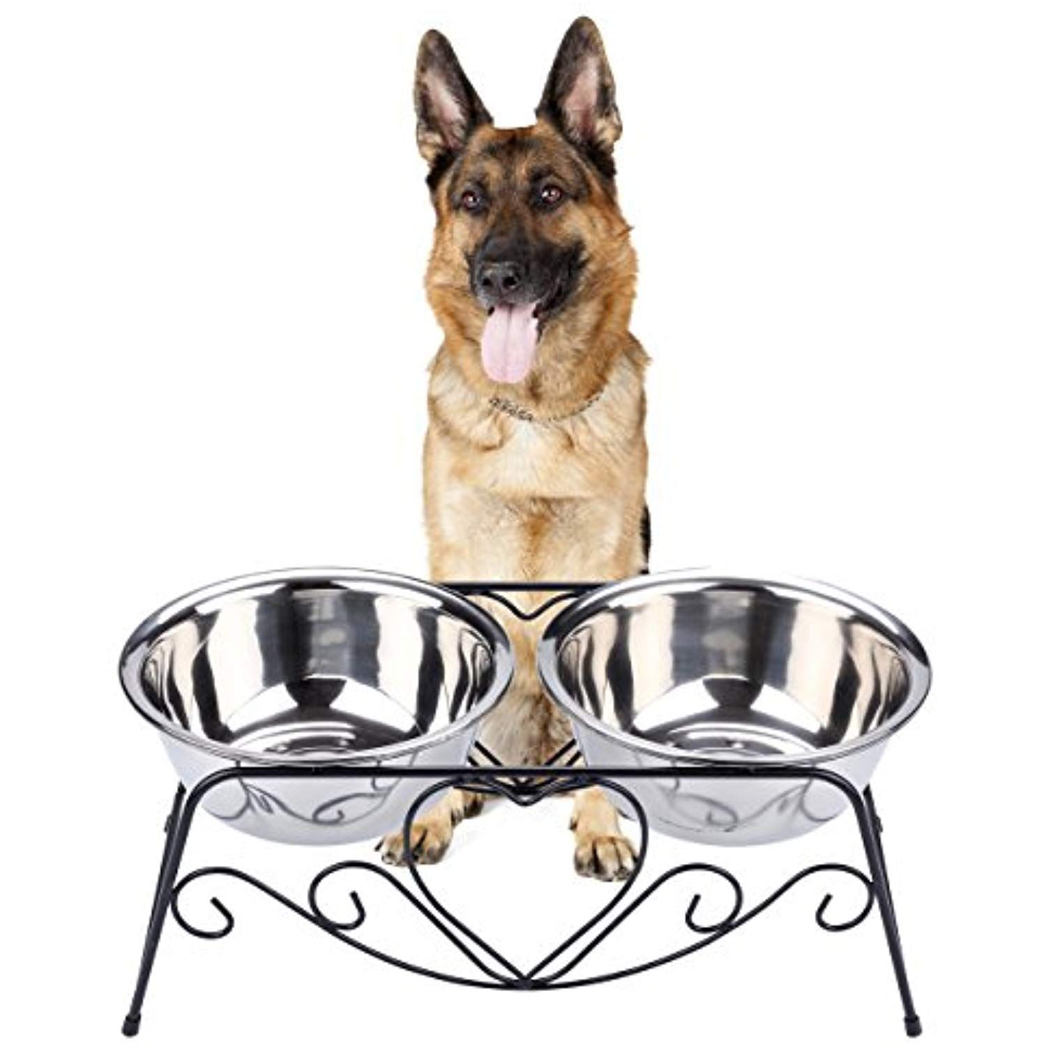 Cico pet feeder for dog cat stainless steel food and