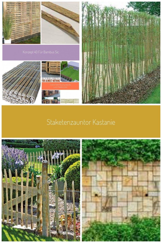 Konzept 40 Fur Bambus Sichtschutz Obi Bambussichtschutz Konzept