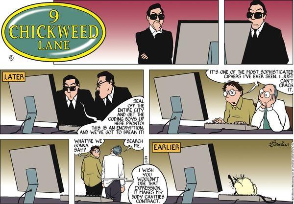 9 Chickweed Lane Cartoon for Nov/24/2013 LOL! Kitty Kat Kode. ;-)