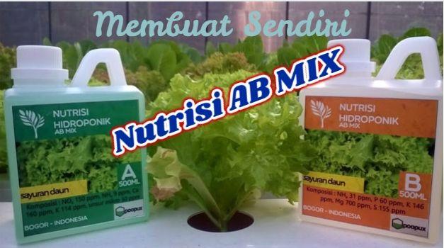 Nutrisi Hidroponik Ab Mix Merupakan Nutrisi Hidroponik Yang