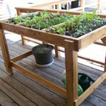 Handicap and elderly accessible Raised Bed Gardening plans