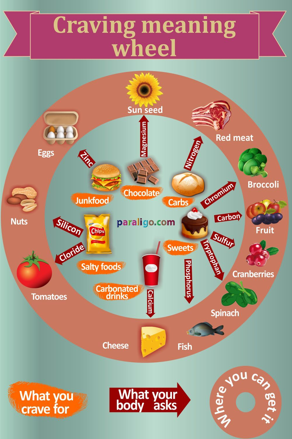 Craving meaning wheel healthy eating pinterest