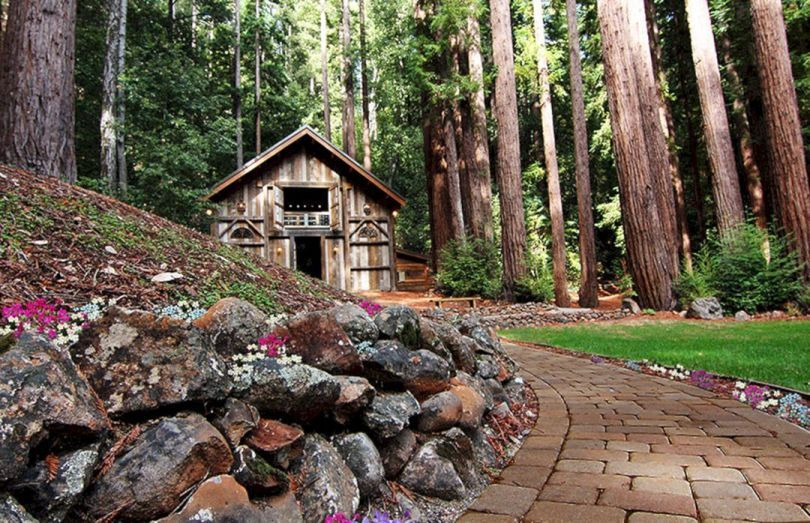 55+ Awesome Redwood Forest Wedding Venues For Perfect ...