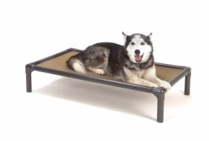 Standard Almond Pvc Dog Bed Dog Bed Kuranda Dog Beds Chew Proof Dog Bed