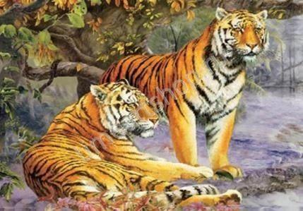 Два тигра, картина раскраска по номерам по холсту, размер ...