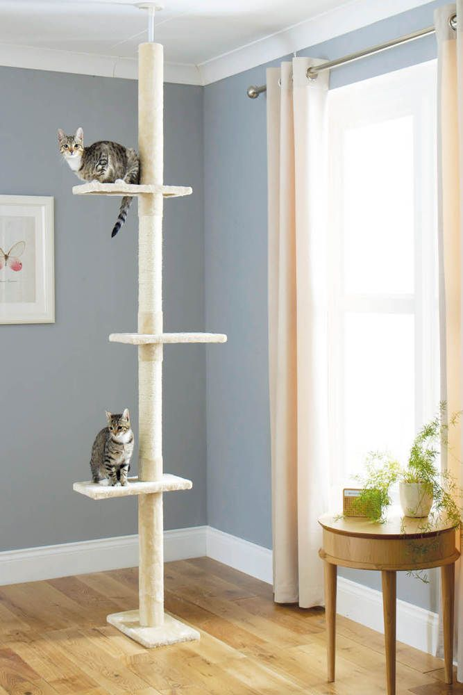3 Tier Floor To Ceiling Cat Pet Play Climbing Tree Activity Playground Frame