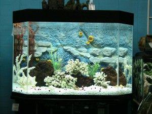 Задняя стенка аквариума своими руками фото 551