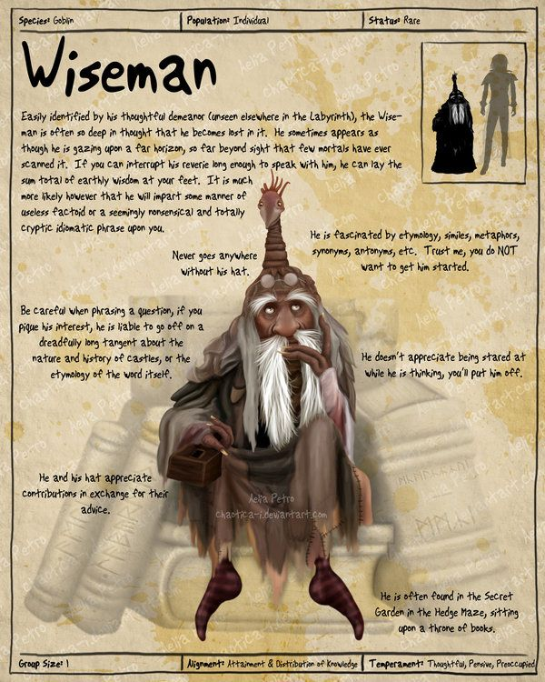 Labyrinth Guide - Wiseman by =Chaotica-I Fan Art / Digital Art / Painting &…