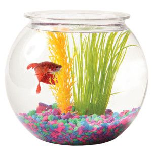 Null Fish Bowl Goldfish Bowl Pet Bowls