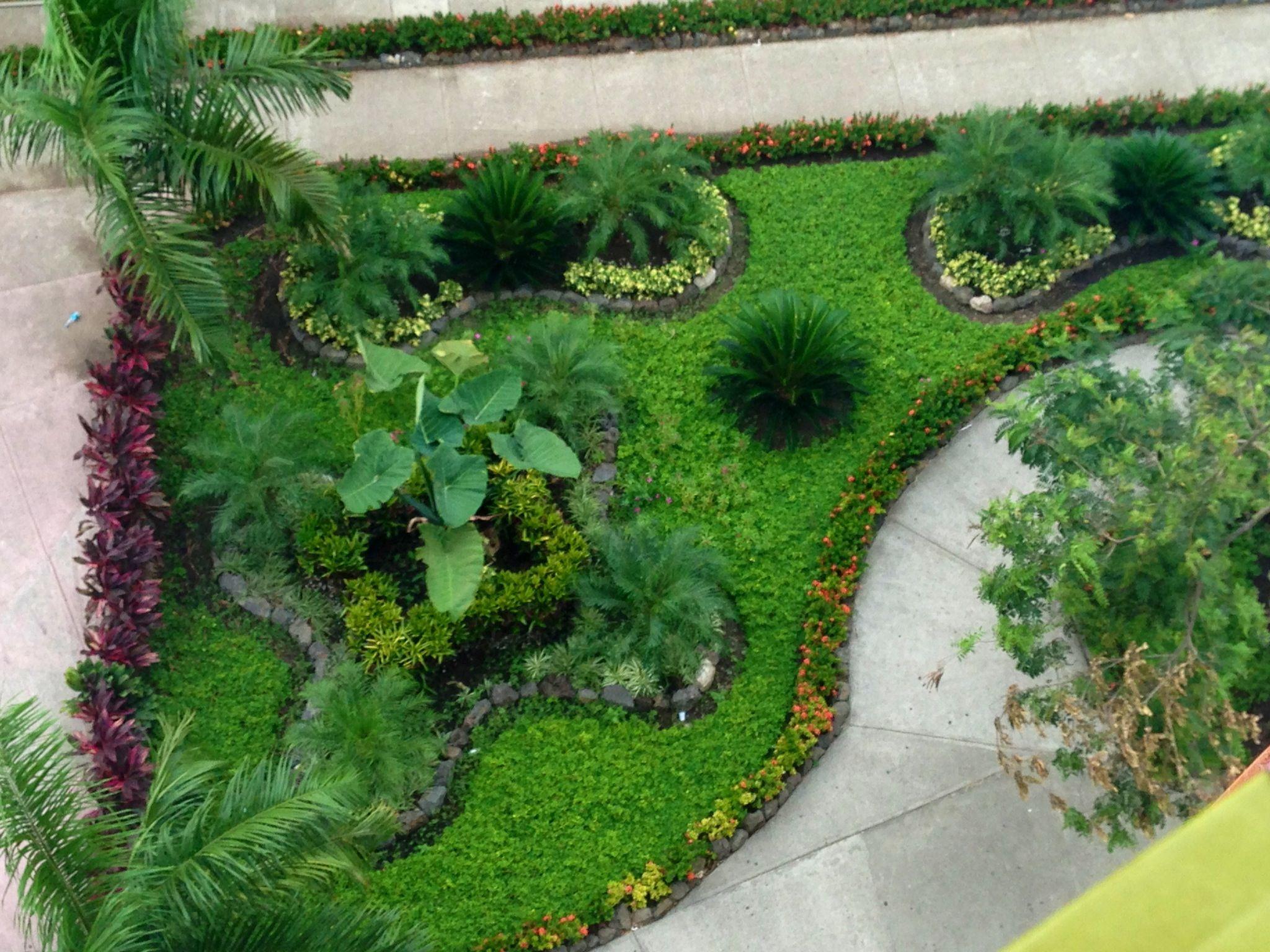 U-SPS Garden, Honduras
