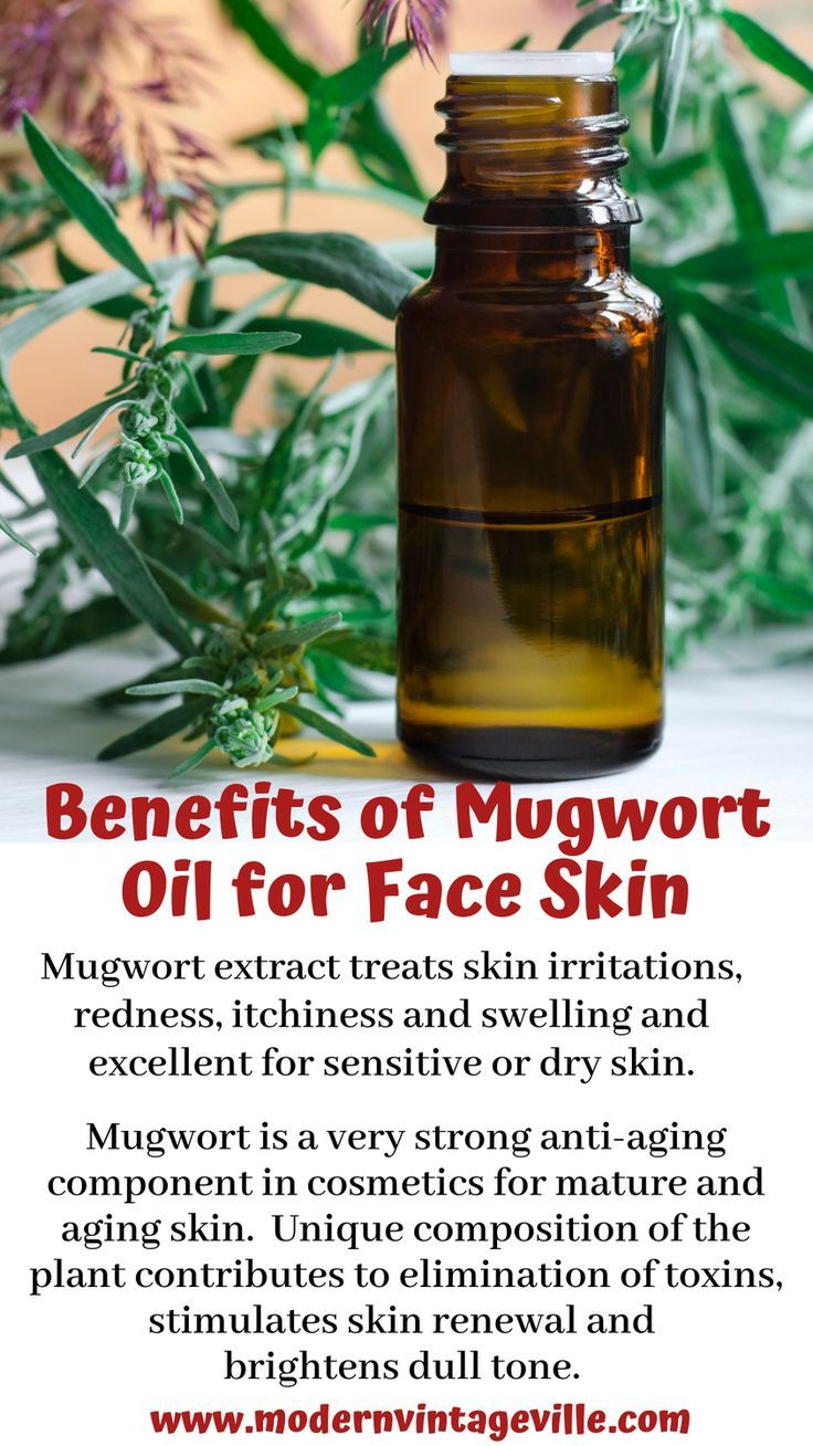 5 Unique Uses of Mugwort in Cosmetics and Skincare (With
