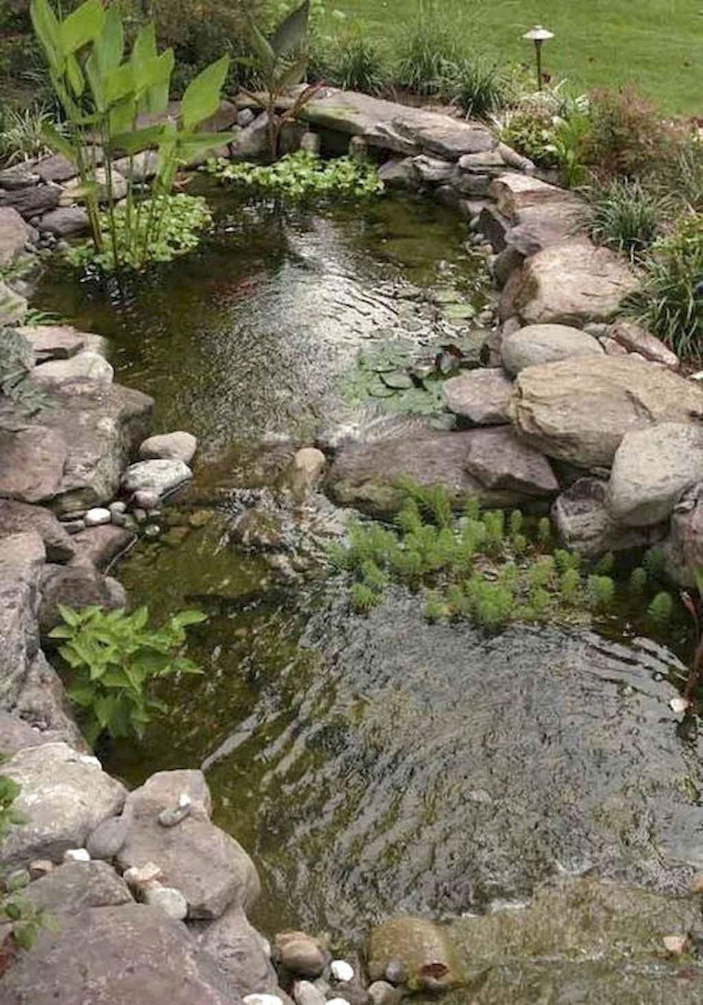 Backyard Ponds And Water Garden Landscaping Ideas Frugal Living Water Features In The Garden Garden Pond Design Ponds Backyard