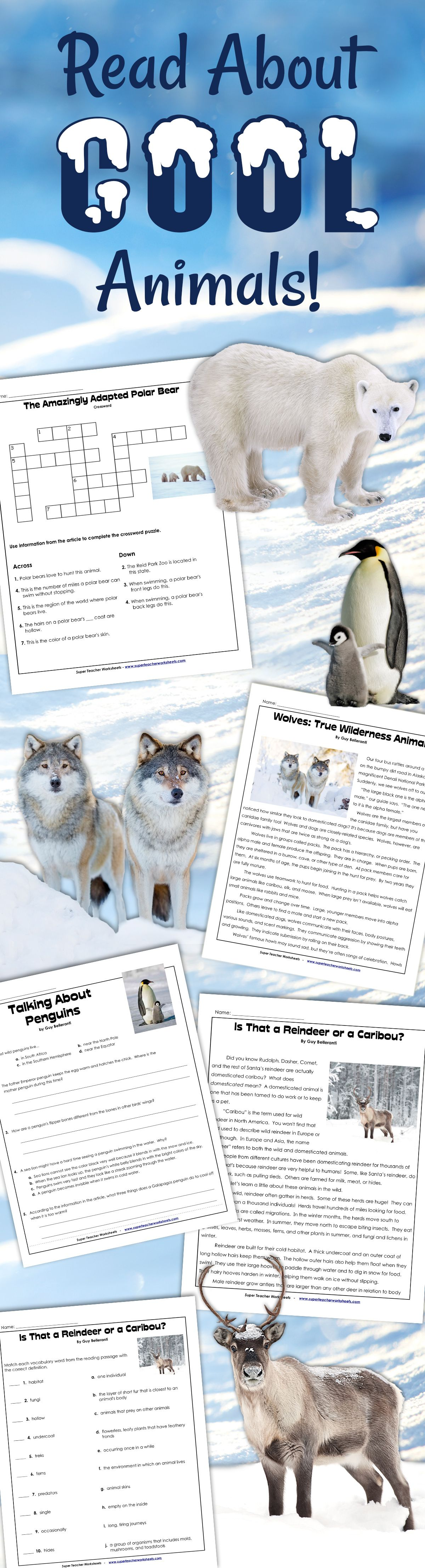 Looking For Some Cool Reading Worksheets To Beat The