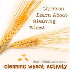 Gleaning Wheat Activity for Ruth and Naomi Bible Lesson from www.daniellesplace.com
