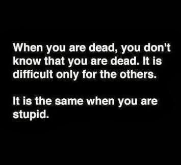 Dead and stupidness