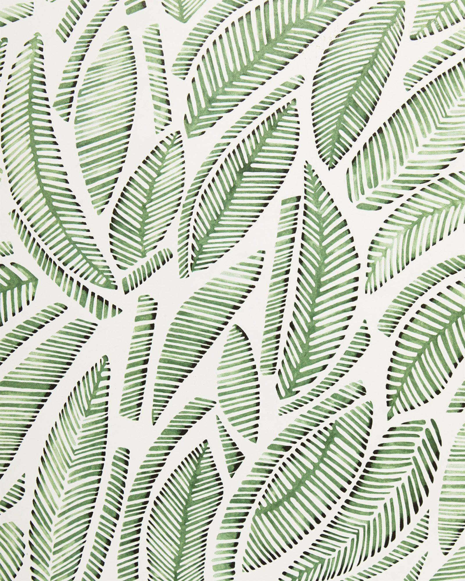 Serena & Lily Fallbrook Wallpaper Swatch Palm wallpaper