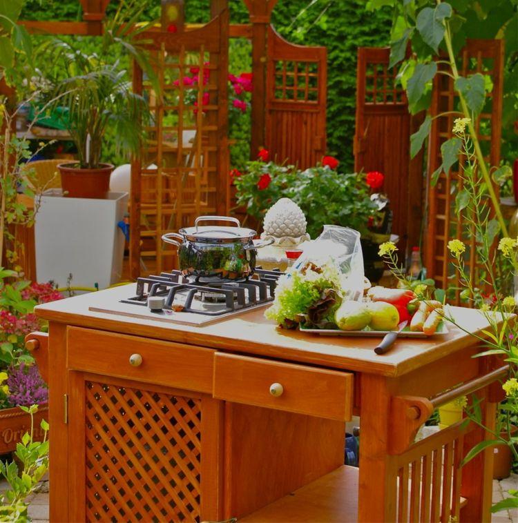 outdoor-küche-garten-holz-mobil-servierwagen-herd-gas-klein Haus - outdoor küche holz