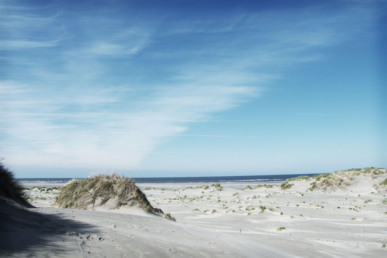Noordzee Texas A film by Bavo Defurne Film, Natural