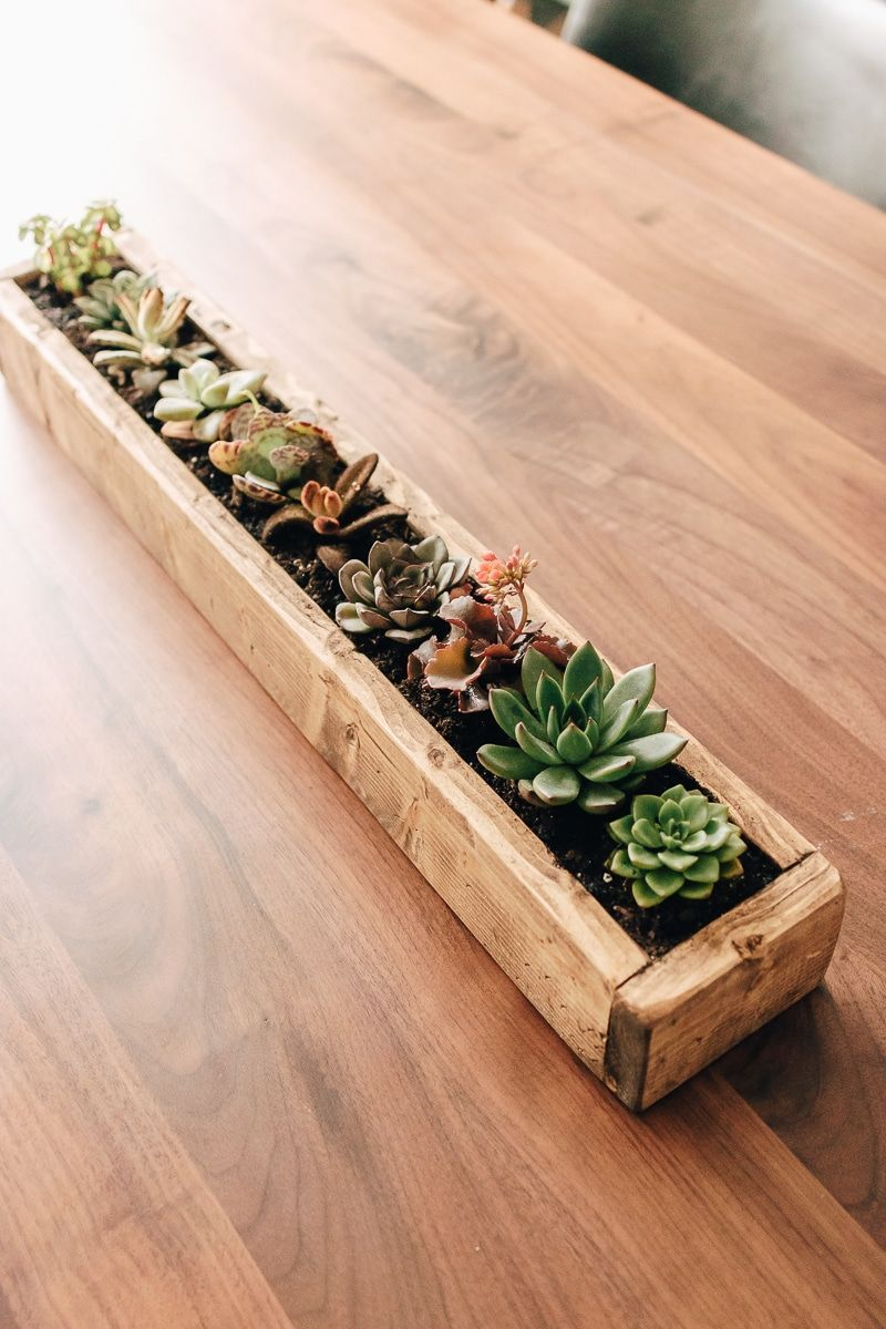 DIY Succulent Planter Box - Decor Hint - Home Decor And DIY Projects