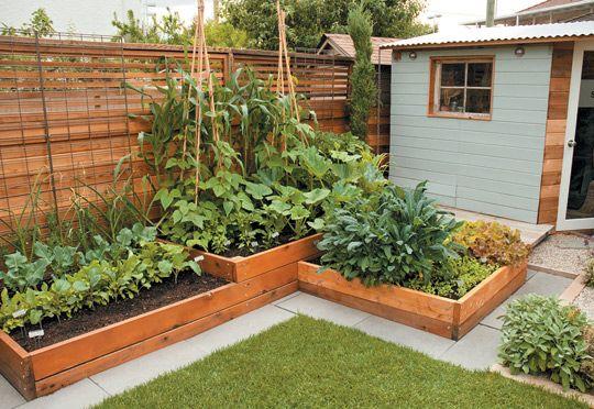 Small Space Food Garden Design Secrets Backyard Garden Layout