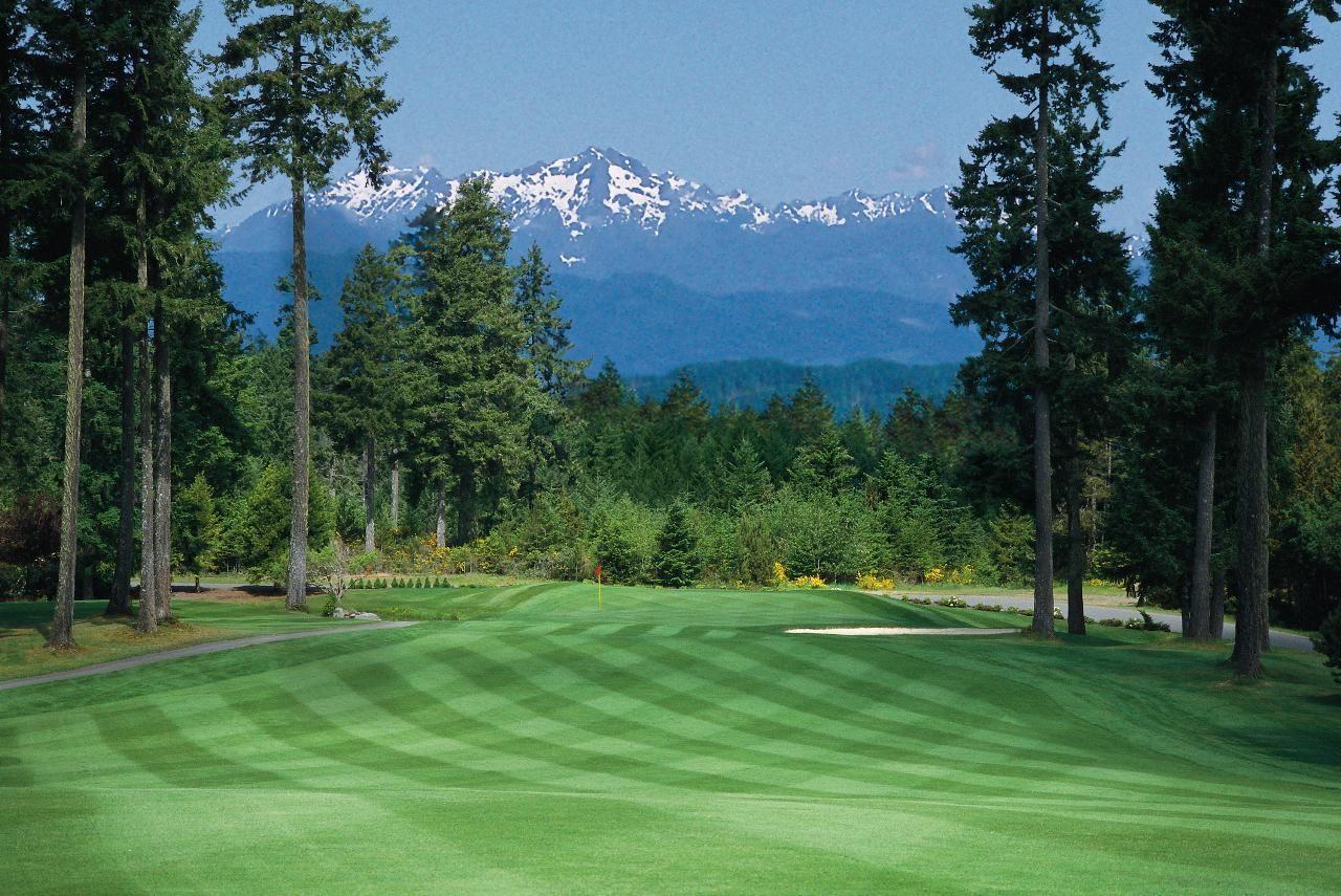 12++ Alderbrook golf course washington ideas