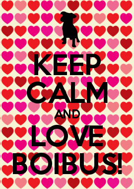 Keep Calm And Love Boibus Hi Shelby And Skye I Figured This Out