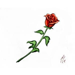 Red Rose With Stem Tattoo Fhqpphq0 Jpg 298 298 Single Rose Tattoos Rose Stem Tattoo Red Rose Drawing