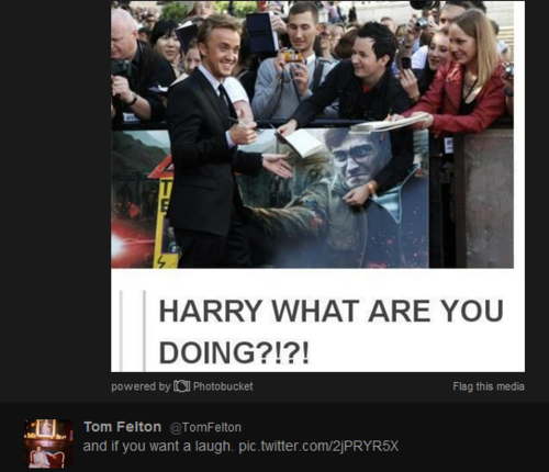 Harry what are you doing!?
