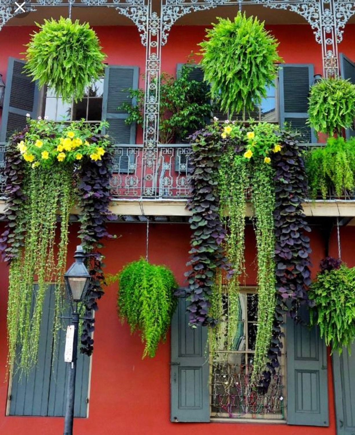 Pin about French quarter, New orleans garden district and