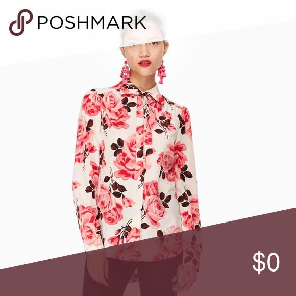ISO dieses Kate Spade New York Rosa Krawattenhemd! Auf der Suche nach dieser Kate Spade Ne ...#auf #der #dieser #dieses #iso #kate #krawattenhemd #nach #rosa #spade #suche #york
