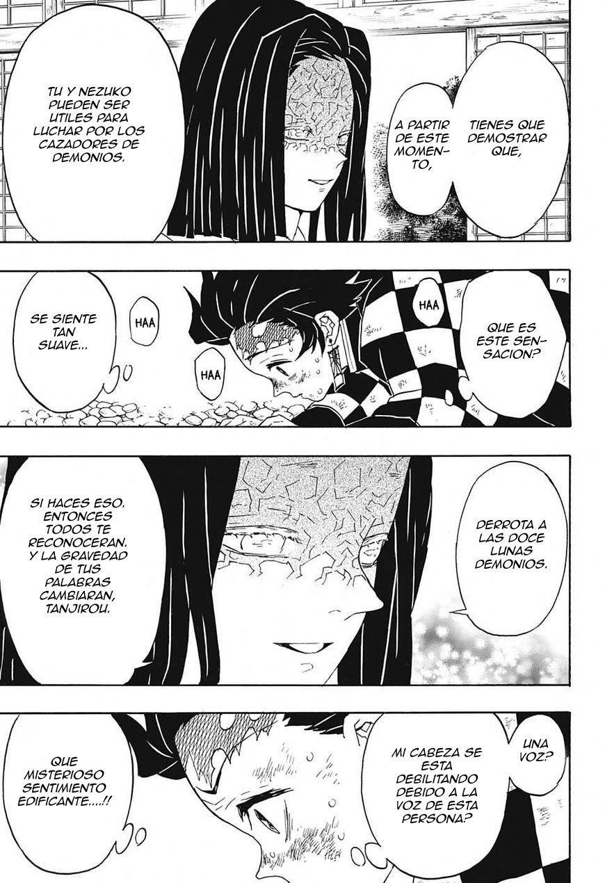 Pagina 15 Manga 47 Kimetsu No Yaiba Demon Slayer Cazadores Rabia Demonios