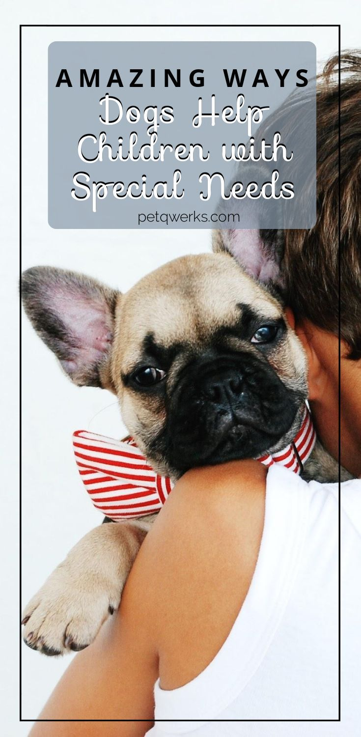 Amazing Ways Dogs Help Children With Special Needs Pet Qwerks