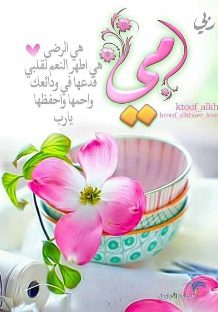 صور حزينة عن الأم اروع 41 صورة حزينه عن الام رحمك الله يا أمي Love Wallpaper Backgrounds Islamic Quotes Wallpaper Islamic Gifts