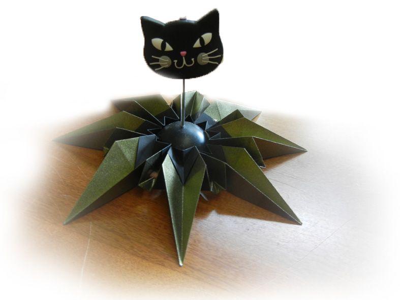 Estrela Alegria - MK com Gato