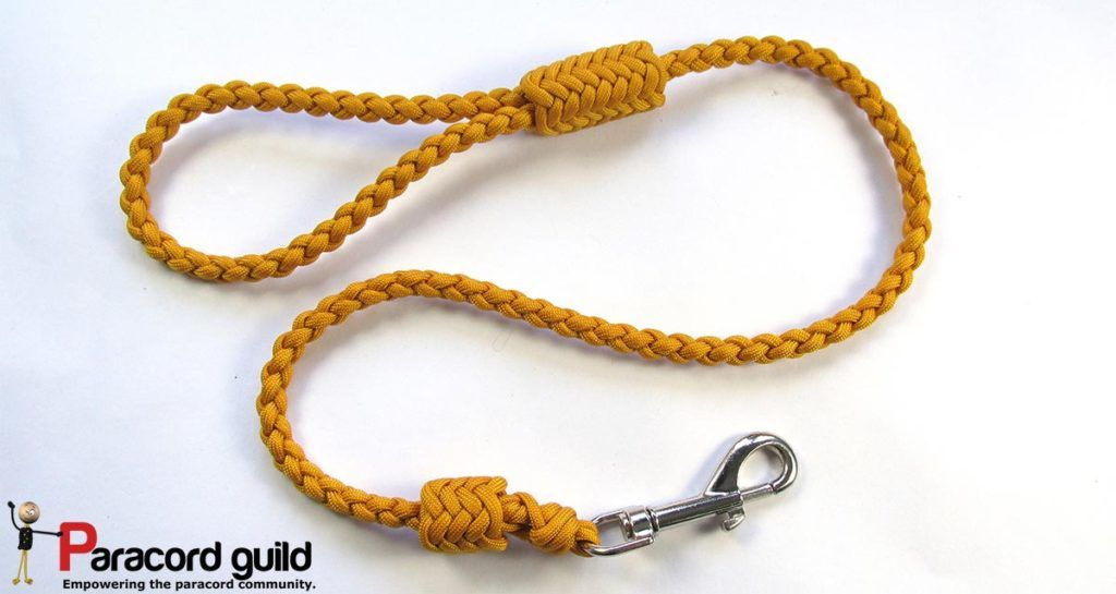 Braided paracord leash with herringbone knots. Paracord