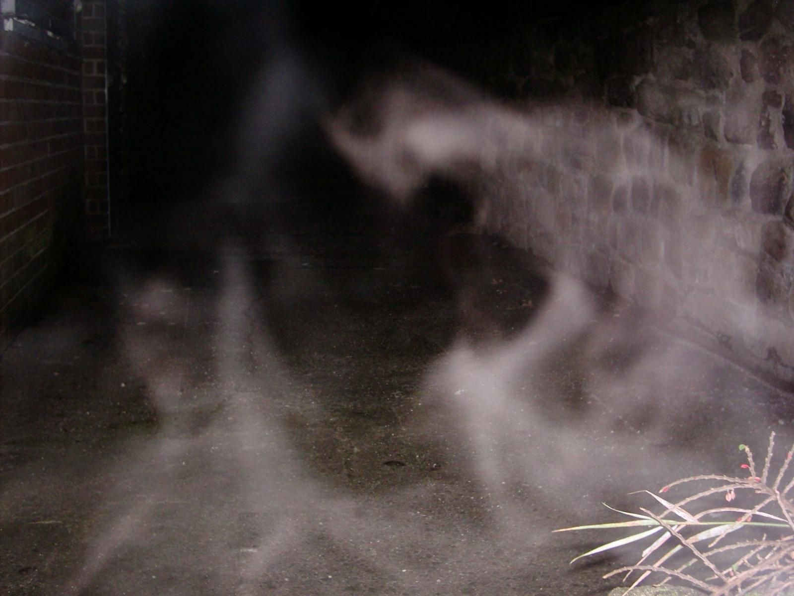 St. Paul's church entity - Mists and Vapours - Gallery - Ghost Mysteries Discussion Forums