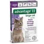 Bayer Advantage II Flea Treatment for Large Cats