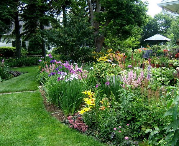Perennial border around patio | Landscape Design Ideas ...