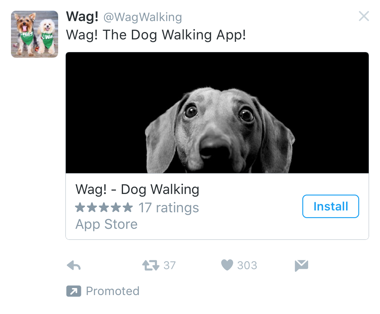 Wag dog walking twitter app install ad example Twitter